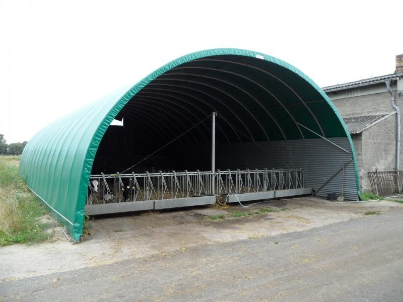 Túnel de cría bovina - Alemania